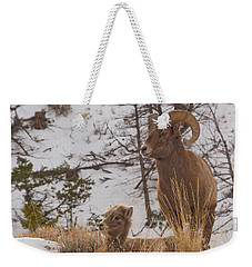 Bighorn Ram And Kid Weekender Tote Bag