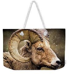 Bighorn Sheep In Winter Weekender Tote Bag