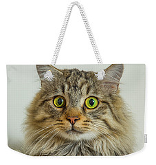 Weekender Tote Bag featuring the photograph Binni by Janis Knight