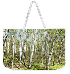 Birch Forest In Spring Weekender Tote Bag