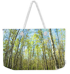 Birch Forest Spring Weekender Tote Bag