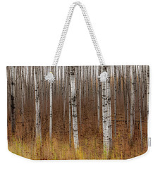 Birch Trees Abstract #2 Weekender Tote Bag