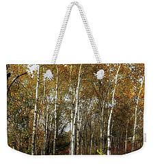 Birch Trees  Weekender Tote Bag by Jimmy Ostgard
