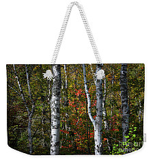Weekender Tote Bag featuring the photograph Birches by Elena Elisseeva