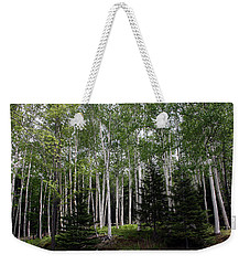 Birches Weekender Tote Bag by Heather Applegate
