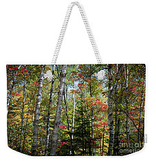 Weekender Tote Bag featuring the photograph Birches In Fall Forest by Elena Elisseeva