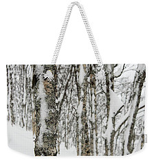 Weekender Tote Bag featuring the photograph Birches In Snow by Alex Lapidus