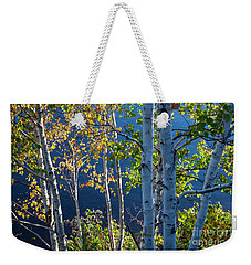 Weekender Tote Bag featuring the photograph Birches On Lake Shore by Elena Elisseeva