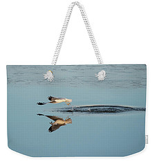 Bird Catching Fish For Breakfast  Weekender Tote Bag