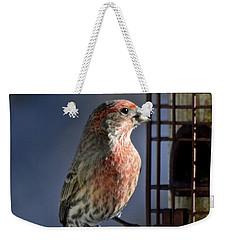 Bird Feeding In The Afternoon Sun Weekender Tote Bag