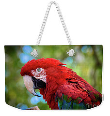 Weekender Tote Bag featuring the photograph Bird In Red by Lisa L Silva