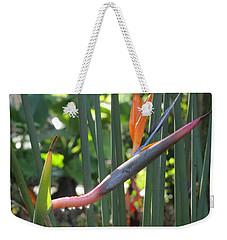 Bird Of Paradise Dripping Weekender Tote Bag