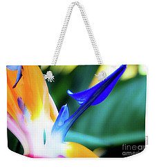 Weekender Tote Bag featuring the photograph Bird Of Paradise Flower by D Davila