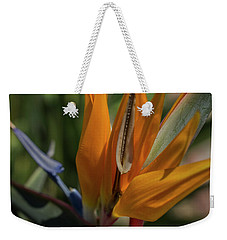 Bird Of Paradise Weekender Tote Bag