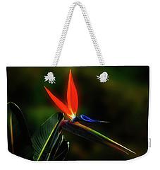 Bird Of Pardise Weekender Tote Bag by Joseph Hollingsworth