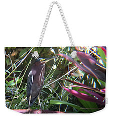 Bird On Bath Weekender Tote Bag
