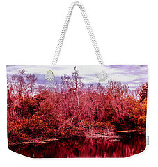 Weekender Tote Bag featuring the photograph Bird Out On A Limb 2 by Madeline Ellis
