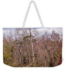 Weekender Tote Bag featuring the photograph Bird Out On A Limb 3 by Madeline Ellis