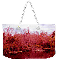 Weekender Tote Bag featuring the photograph Bird Out On A Limb by Madeline Ellis