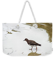 Weekender Tote Bag featuring the photograph Bird Walking On Beach by Mariola Bitner