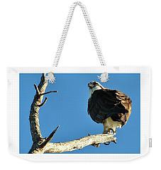 Birds 10 17 Weekender Tote Bag