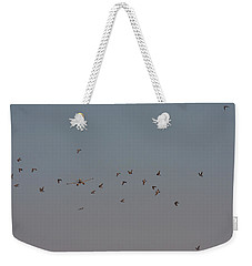 Birds And Airplane Weekender Tote Bag