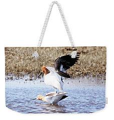 Birds Do It Weekender Tote Bag
