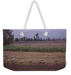 Birds2 Weekender Tote Bag