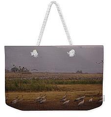 Birds3 Weekender Tote Bag