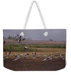 Birds4 Weekender Tote Bag