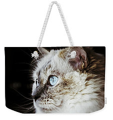 Weekender Tote Bag featuring the photograph Birdwatching by Karen Stahlros