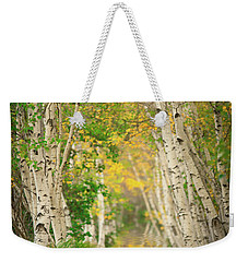 Weekender Tote Bag featuring the photograph Birtch Row  by Emmanuel Panagiotakis