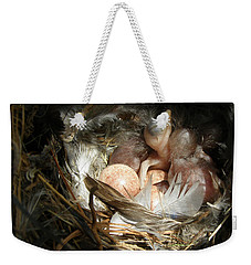 Weekender Tote Bag featuring the photograph Birthday Spotlight by Angie Rea