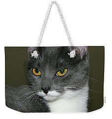 Weekender Tote Bag featuring the photograph Biscuit by Doris Potter