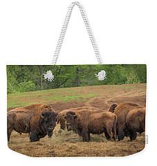 Bison 2 Weekender Tote Bag
