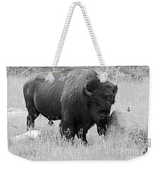 Bison And Buffalo Weekender Tote Bag
