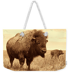 Bison And Calf Weekender Tote Bag by American West Legend By Olivier Le Queinec