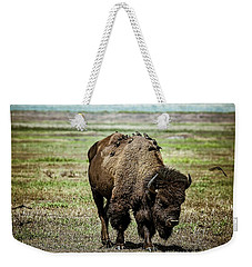 Weekender Tote Bag featuring the photograph Bison Bird Bus by Mary Hone