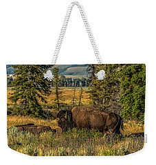 Weekender Tote Bag featuring the photograph Bison Bull Herding Cows by Yeates Photography