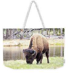Bison By Water Weekender Tote Bag by Steve McKinzie