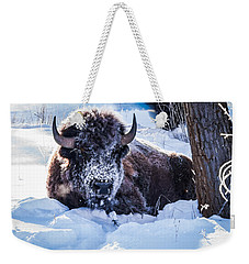 Weekender Tote Bag featuring the photograph Bison At Frozen Dawn by Yeates Photography