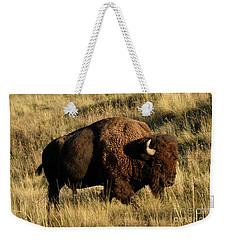 Bison  Weekender Tote Bag by Cindy Murphy - NightVisions