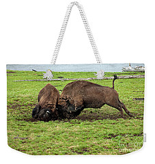 Bison Fighting Weekender Tote Bag by Cindy Murphy - NightVisions