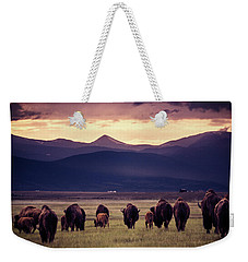 Bison Herd Into The Sunset Weekender Tote Bag by Chris Bordeleau