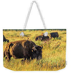 Bison In Autumn Gold Weekender Tote Bag by Yeates Photography