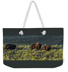 Weekender Tote Bag featuring the photograph Bison In Autumn Light by Yeates Photography