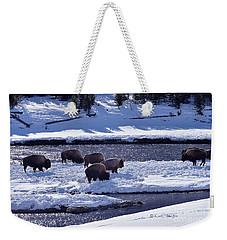 Bison On River Strand Landscape Weekender Tote Bag