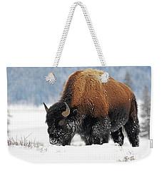 Bison Roaming In The Lamar Valley Weekender Tote Bag