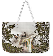 Weekender Tote Bag featuring the photograph Bison Taking A Steam Bath by Sue Smith
