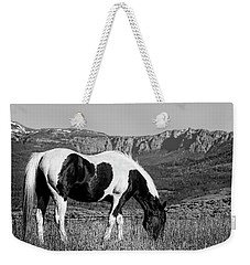 Black And White Horse Grazing In Wyoming In Black And White  Weekender Tote Bag